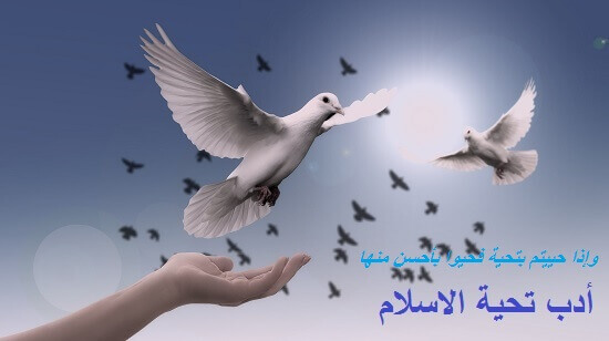 السلام عليكم و رحمة الله