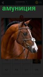 Экипировка для лошадей. Показано самое важная амуниция для управления лошадью, это удила и уздечка. Ответ на 1 уровне в игре 1000 головоломок.