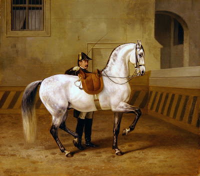 O trabalho a pé é uma ajuda preciosa no ensino do cavalo 0ec9aa9e2b5