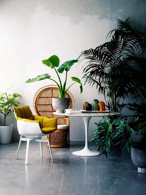 décoration thème jungle inspiration design
