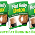 Flat Belly Detox Review 2020 - Does It Really Work For You?