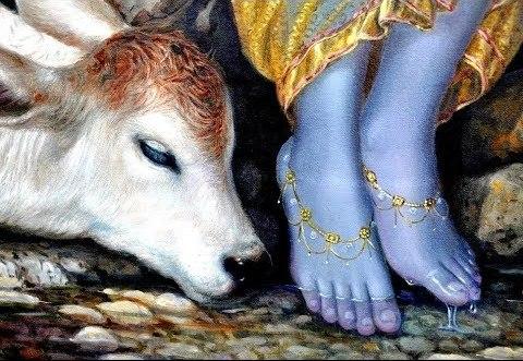 गुरुसत्संग शब्द : तेरे चरण कमल में अरदास सतगुरु मेरा - Tere Charan Kamal Mein Aradaas Sataguru Mera : GuruSatsang Shabd