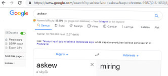 Google Miring