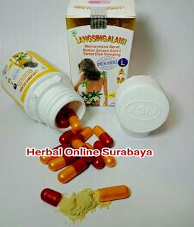 https://alamiherbalsurabaya.blogspot.com/2014/07/jual-jamu-lami-langsing-alami-obat.html
