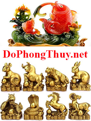 DoPhongThuy.net