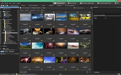 ACDSee Pro 9.1 Build 453 - 2015 Full