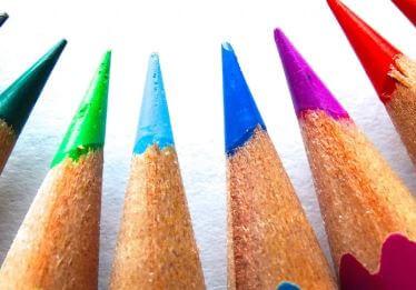 كم عدد الأشجار التي يتم قطعها كل عام لصنع أقلام الرصاص؟