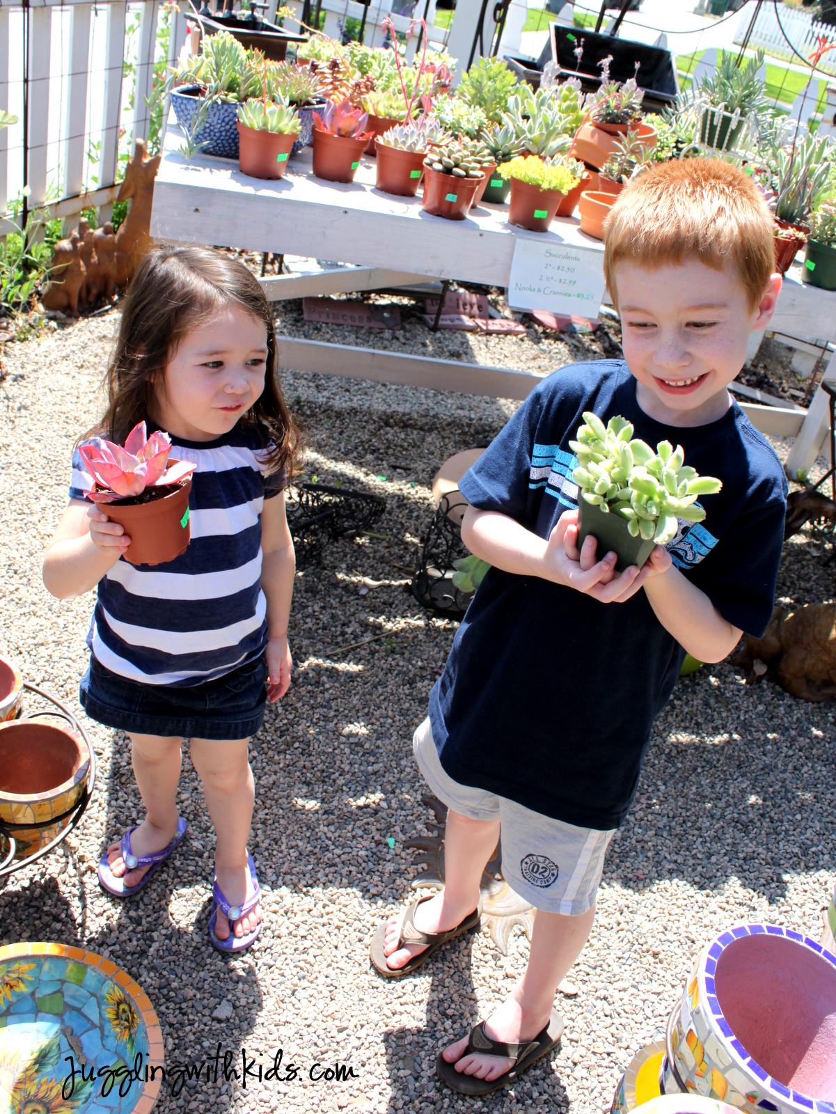 Soda Bottle Terrarium Juggling With Kids