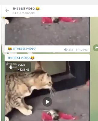 Kumpulan Channel Telegram Humor Lucu Paling Viral Sedunia ...