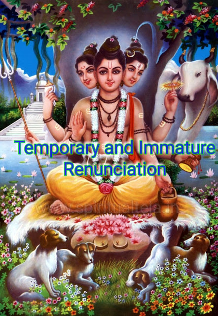 devotion, effortless, faith, Immature, lives, naturally, renunciation, Spiritual, spiritual Teja, temporary,