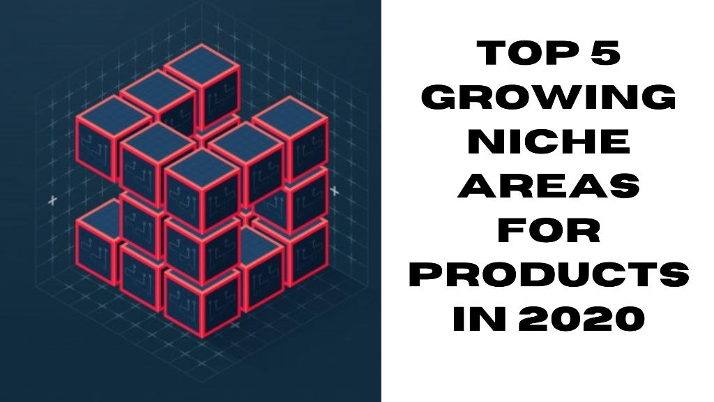 Top 5 growing niche areas for products in 2020