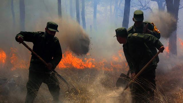 Una joven desata un enorme incendio forestal en México al intentar hacer un video de TikTok