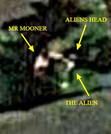 Man-punches-Alien-trying-to-abduct-him-all-caught-on-Google-Earth.