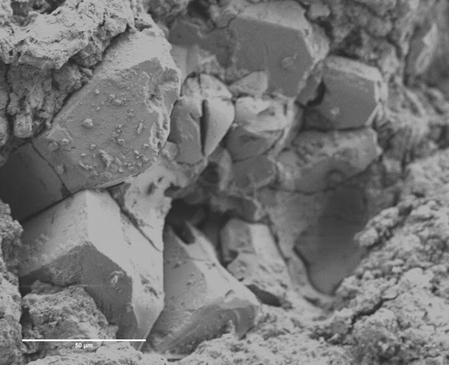 Ancient meteorite could reveal the origins of life on Earth