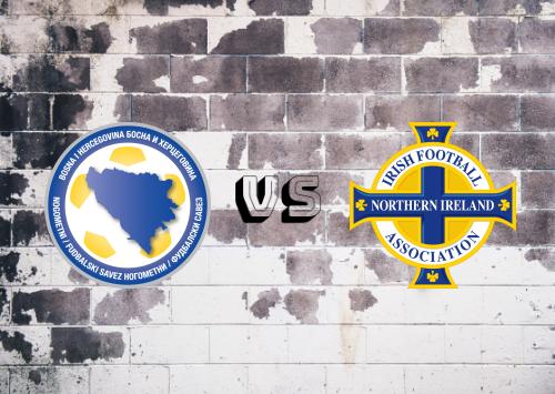 Bosnia-Herzegovina vs Irlanda del Norte  Resumen