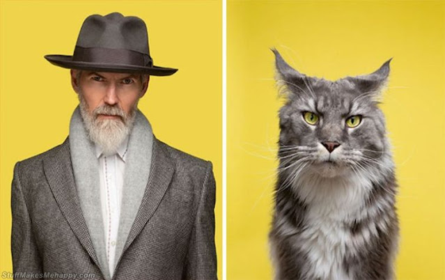 Photographer Takes Pictures Of Cats And Humans That Are Doppelgangers