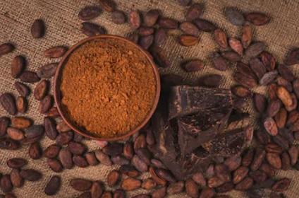 Berbagai Coklat Bubuk yang Dapat Digunakan dalam Pembuatan Kue