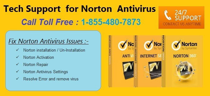Nov 16, · Start your Norton. Next to Subscription Status, click Renew. Click Renew My Subscription. Make sure that your computer is connected to the Internet. In the webpage that opens, follow the instructions to renew your Norton product. When your order is .