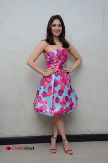 Actress Tamanna Latest Images in Floral Short Dress at Okkadochadu Movie Promotions  0172.JPG
