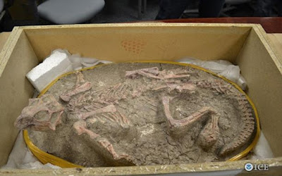 Dinosaurus Super Imut ini Ternyata Bisa Kamuflase