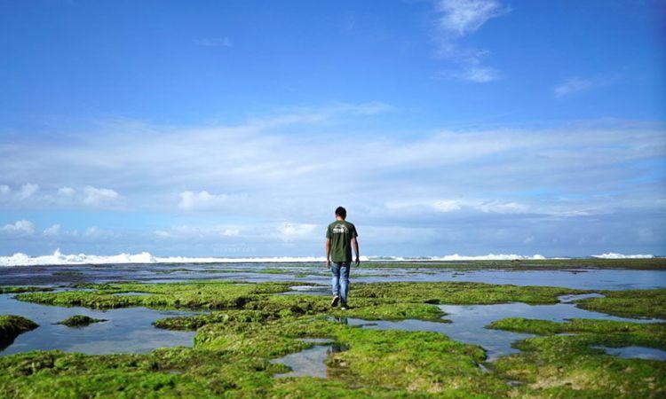 Pesona Keindahan Pantai Sayang Heulang di Garut yang Memukau