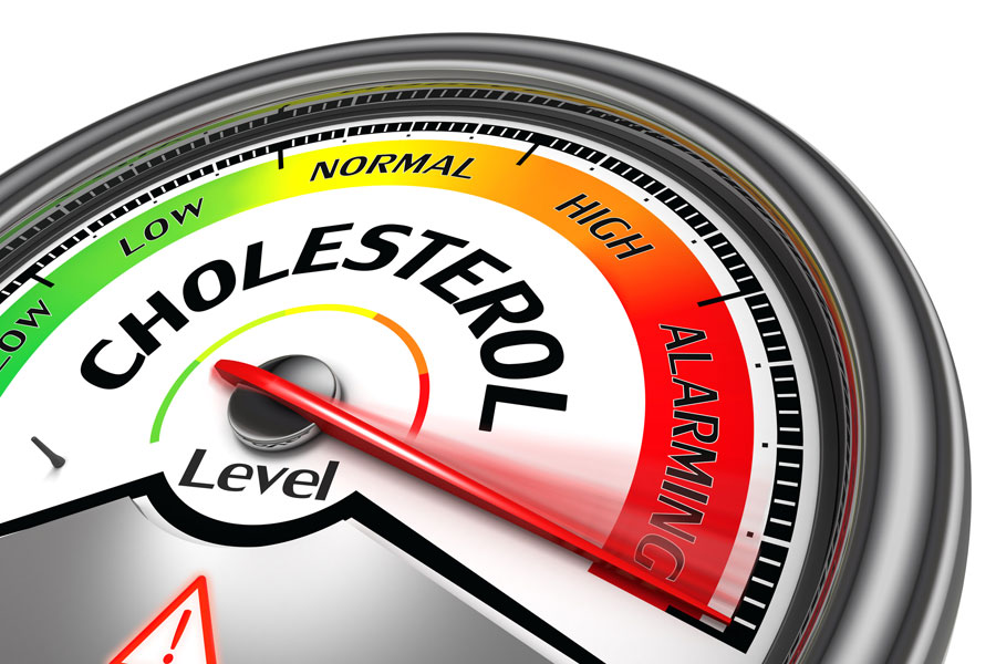 Cholesterol | Health and Fitness Bible