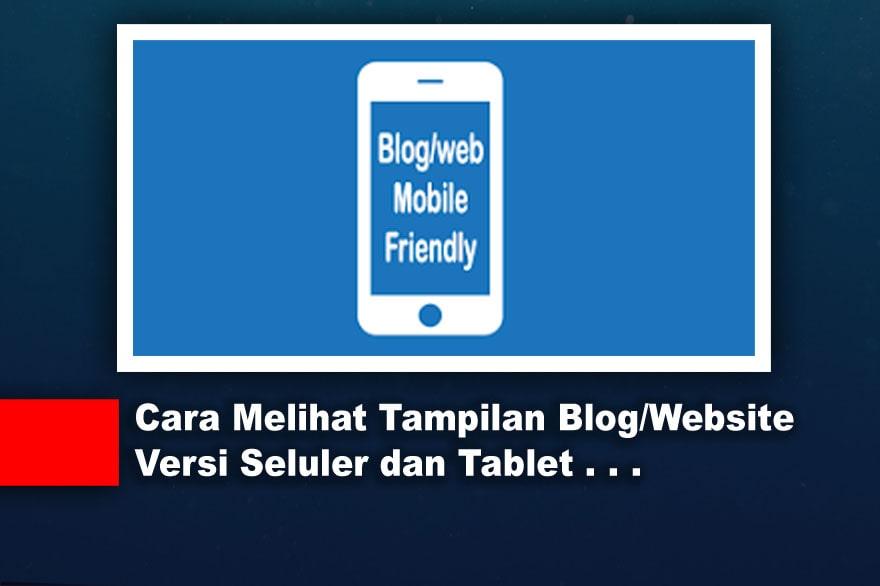Cara Melihat Tampilan Blog/Website Versi Seluler dan Tablet