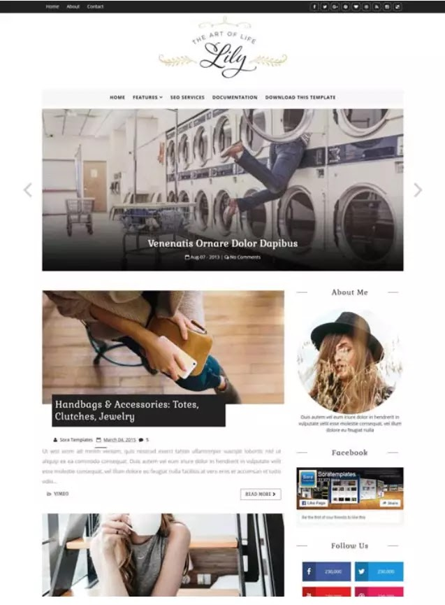 Lily fashion blogger theme