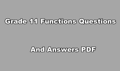 Grade 11 Functions Questions and Answers PDF