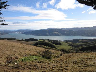 Vistas de la bahía de Otago desde el Castillo Larnach. Península de Otago, en Nueva Zelanda