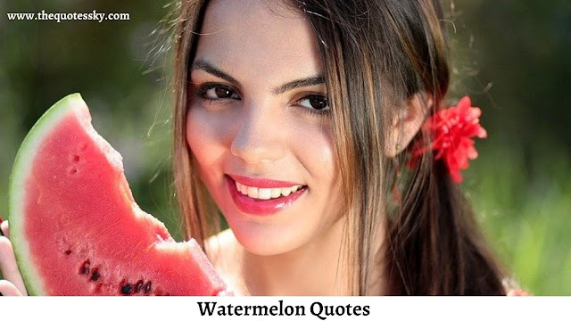 121+ Watermelon Captions For Instagram [ 2021 ] Also Watermelon Quotes