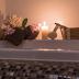 🛀 Bomb the Bath 🛀