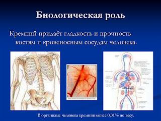 Кремний - польза для организма