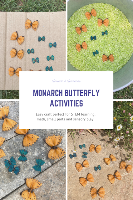 Monarch Butterfly STEM Activities for kids