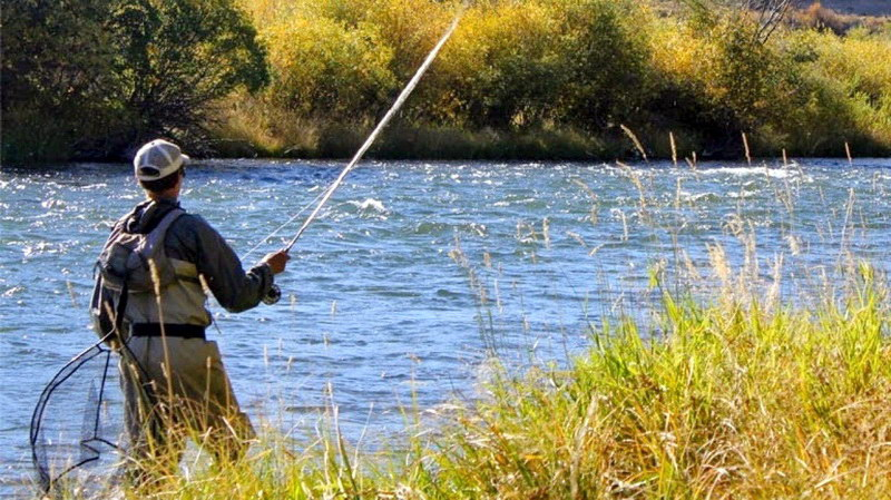 Απαγόρευση αλιείας πέστροφας