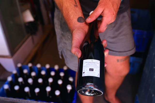 The collectif anonyme wine is now certified organic, Banyuls sur mer, France