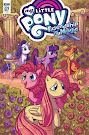 My Little Pony Friendship is Magic #67 Comic Cover Retailer Incentive Variant