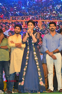 Nenu Local Audio Launch Stills  0014.JPG