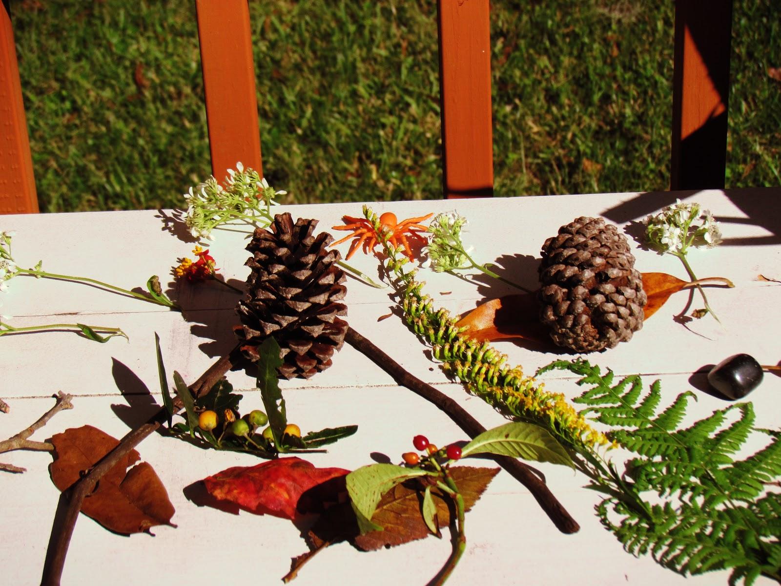 Nature Art Flat Lay Materials With Botanicals