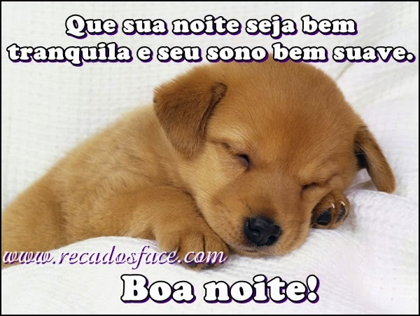 Imagens De Boa Noite Para Whatsapp: WHATSAPP MENSAGENS E RECADOS: Boa Noite Whatsapp Recados