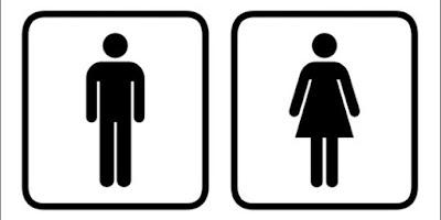 Perbedaan Fisik Laki-Laki Dan Perempuan
