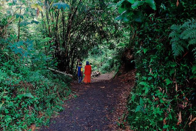 eksplor desa wisata jogja