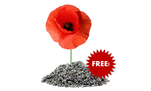 FREE Poppy Seed Packet, FREE Poppy Seed, Poppy Seed For FREE