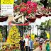 Go โฮจิมินห์ ดูชวนชมเวียดนาม งาน Spring flower festival 2017