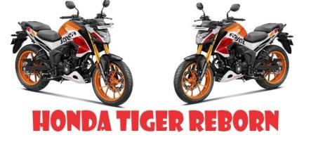Mengupas Tuntas Honda Tiger Reborn