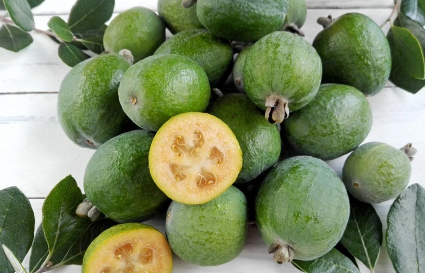What does feijoa look like