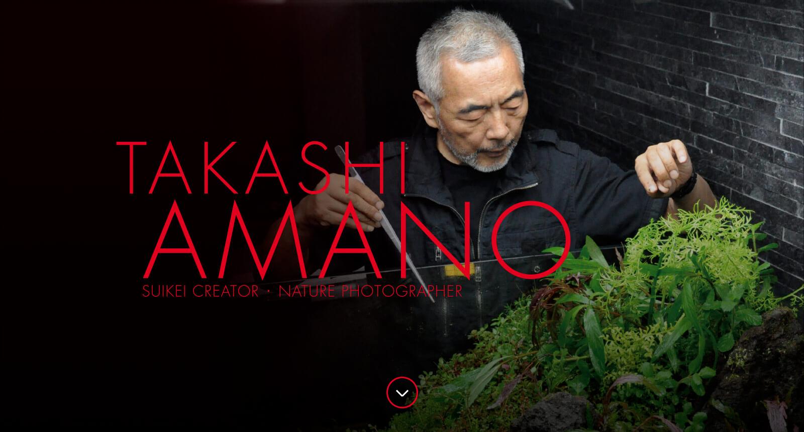 Mondo dei rettili takashi amano la filosofia zen in un for Acquario ada prezzi