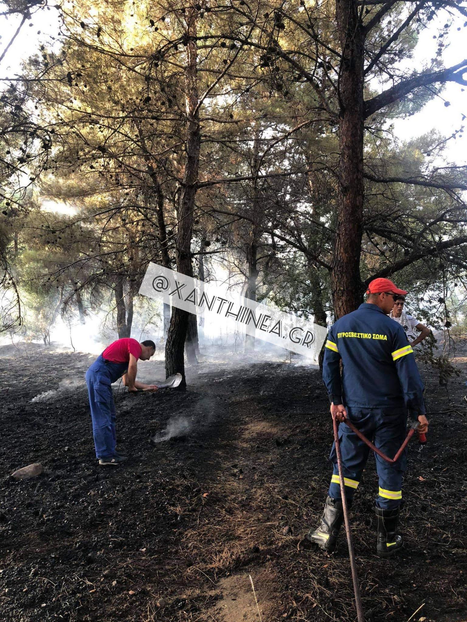 Ξάνθη: Φωτιά σε δασική έκταση στην Χρύσα [ΒΙΝΤΕΟ]