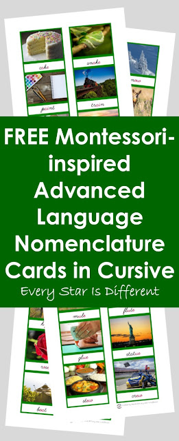 Montessori-inspired Advanced Language Nomenclature Cards in Cursive (Free Printable)