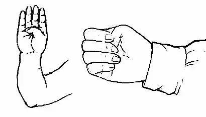 養生四寶,握固、叩齒、咽津、鳴天鼓(強本固腎)